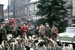 Boxing Day Meet of the Blencathra Foxhounds in Keswick, 1962