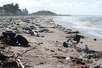 The litter problem on the coast of Guyana, 2010