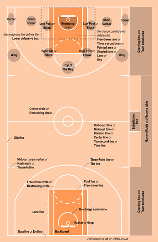 Most important terms related to the basketball court