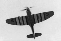 A Tempest V flying overhead with Invasion stripes, 1944