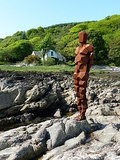 Gormley Land Shore Cottage.jpg