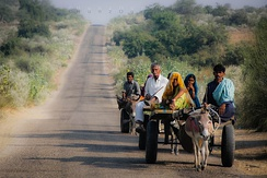 Donkey cart most commonly used for transportation in Thar desert