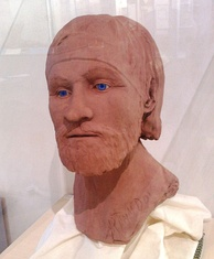 A reconstruction of a Viking from Repton in Mercia. This model is now in Derby Museum.[g]