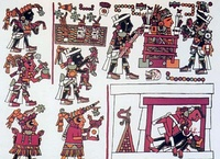 Many codices made both during Pre-hispanic Mexico and in the Spanish colony are preserved.