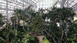 The interior of the $13.5 million Nicholas Conservatory[79]