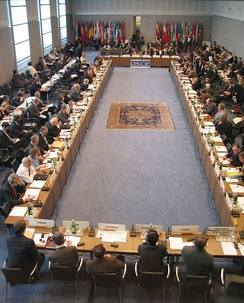 A meeting of the OSCE Permanent Council at the Hofburg in Vienna, Austria.