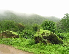 The Dhofar mountainous region in southeastern Oman, where the city of Salalah is located, is a tourist destination known for its annual khareef season