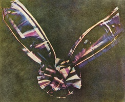 The first color photograph made by the three-color method suggested by James Clerk Maxwell in 1855, taken in 1861 by Thomas Sutton. The subject is a colored ribbon, usually described as a tartan ribbon.