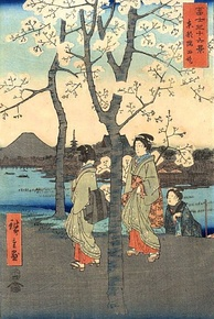 Woodblock print of Mount Fuji and cherry blossom from Thirty-six Views of Mount Fuji by Hiroshige