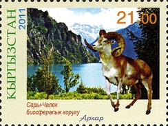 Marco Polo sheep on a Kyrgyzstan stamp