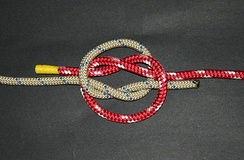 True lover's knot (#2421) before tightening. The intertwined overhand knots are readily visible.