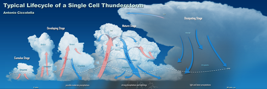 Progressive evolution of a Single Cell Thunderstorm