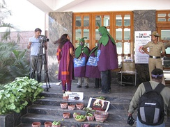 Protesters in Bangalore promote the diversity of non-genetically modified eggplants in India.
