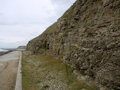 The cliffs of magnesian limestone, Grangetown promenade
