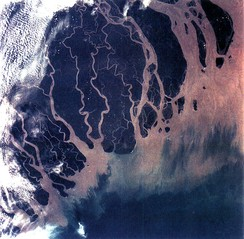 The Ganges Delta in India and Bangladesh is the largest delta in the world, and one of the most fertile regions in the world.