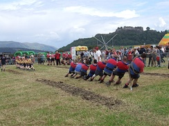 Tug of war at the Highland Games in Stirling