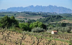 Pla de Bages (part of the Central Depression) and the mountain of Montserrat