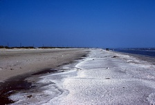 Gulf beach near Sabine Pass