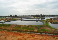 Fish farms in Chengmai