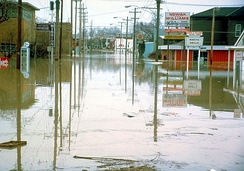 A flooded Superior Street in 1982.