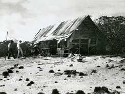 Members of the Tanager Expedition explore an abandoned feather poaching camp on Peale Island.