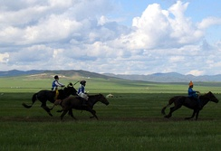 Riders during Naadam festival