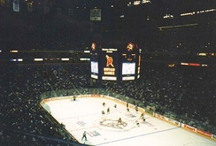The Sabres playing a game during the 1998–99 season. The Sabres were later crowned the Eastern Conference champions following the 1999 Stanley Cup playoffs.