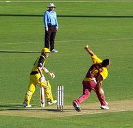 The Queensland Bulls take part in Australia's domestic cricket tournaments