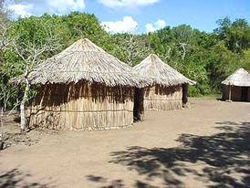 A reconstructed Taíno village at the Tibes Ceremonial Center
