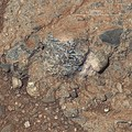 """Harrison"" rock (and crystals) on Mars – viewed by the Curiosity rover (January 15, 2014)."