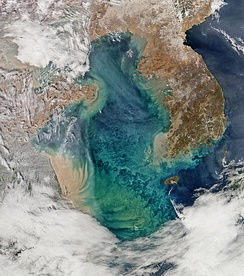 Brown sediment spills out into the Yellow Sea from rivers in eastern China and Korea. The nutrients in the sediment may be responsible for the bloom of phytoplankton seen as blue-green swirls.[6]
