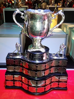The Memorial Cup is awarded to the junior ice hockey champion of Canada, and its status was threatened in 1971 while Kryczka was vice-president of the CAHA.
