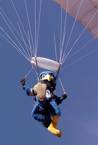 United States Air Force Academy Mascot