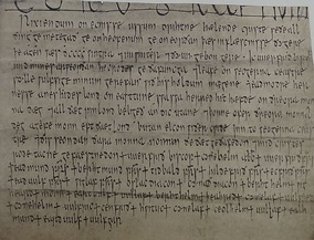Charter S 1281 dated 904, grant of Bishop Werferth to his reeve, Wulfsige