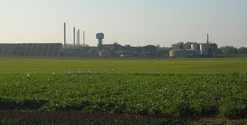A sugar beet farm in Belgium: Beyond the field is the sugar factory.