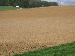 Soil, on an agricultural field in Germany, which has formed on loess parent material.