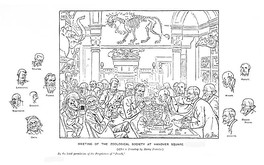 Punch illustration of a meeting of the zoologists