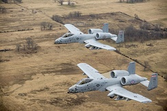 Two A-10s in formation