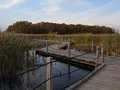 This boardwalk allows people to cross Horicon Marsh.