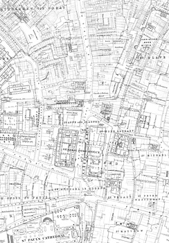 The St Martin's Le Grand area on an 1875 Ordnance Survey map.