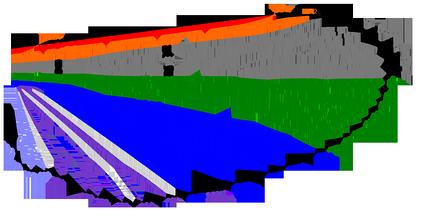 Схематическое изображение основного типа жилкования крыла насекомых