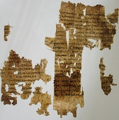 Fragments of papyrus