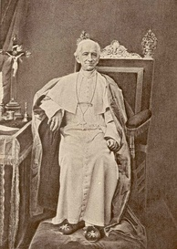 In 1889, Pope Leo XIII authorized the founding of The Catholic University of America in Washington, DC, and granted it Papal degrees in theology