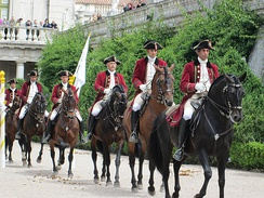 "Lusitano riders of the Portuguese School of Equestrian Art, one of the ""Big Four"" most prestigious riding academies in the world, alongside the Cadre Noir, the Spanish Riding School, and the Royal Andalusian School.[1]."