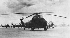 RVNAF CH-34As at Tan Son Nhut.