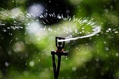 Micro-sprinkler