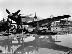 A-36A of the 86th Fighter Bomber Group (Dive) in Italy in 1944.