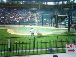 "The ""Crocoseum"" at Australia Zoo, where Steve Irwin's memorial service was held."