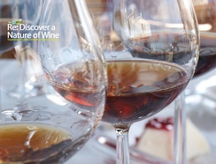 The commandaria wine tasting