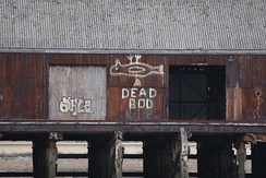 """Dead Bod"" mural in original location on a jetty at Alexandra Dock"